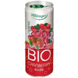 REFRESCO DE ARANDANOS BIO 250 ML HOLLINGER